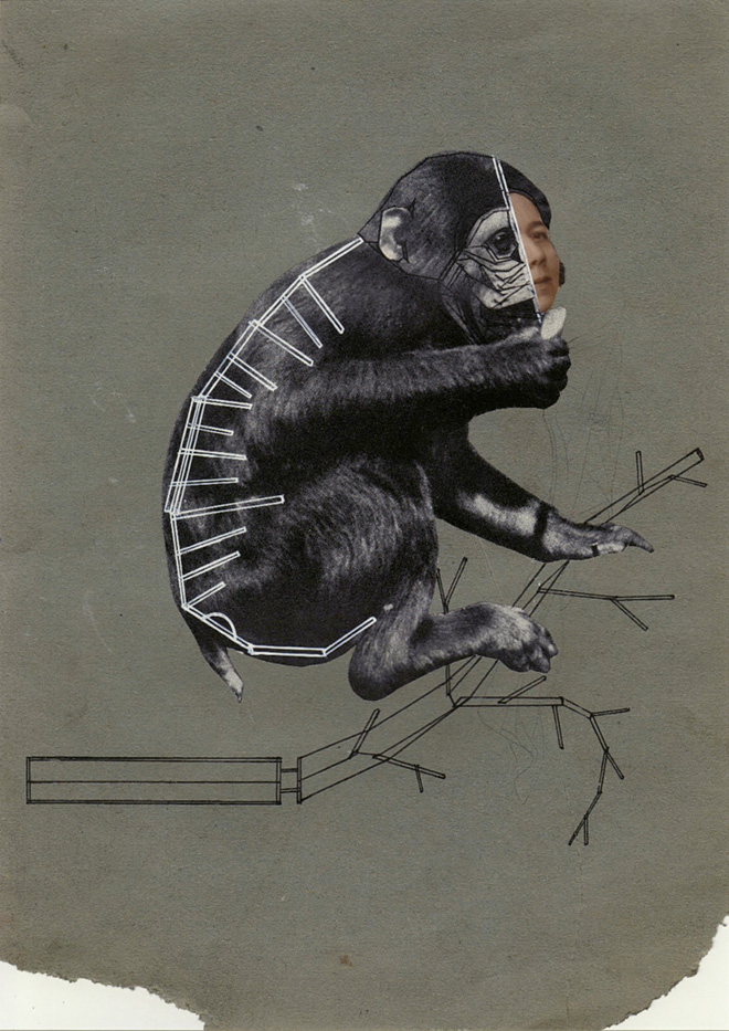 Eva Koátková, Unlearning Instincts, 2013. Collage on paper. Courtesy the artist