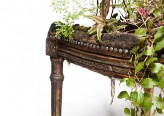 Rodrigo Bueno cultivates botanical life within nature-filled furniture