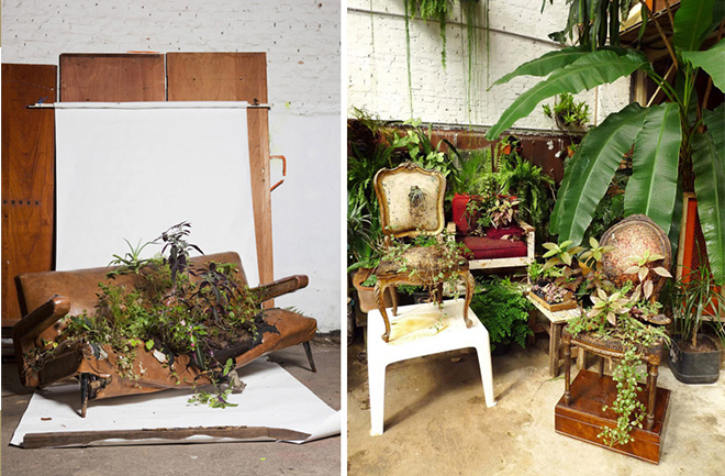 Rodrigo_Bueno_cultivates_botanical_life_within_nature-filled_furniture_10