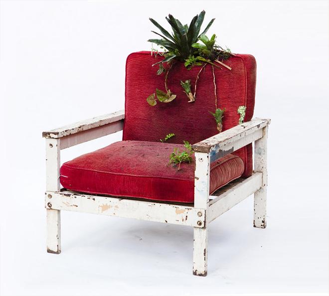 Rodrigo_Bueno_cultivates_botanical_life_within_nature-filled_furniture_12