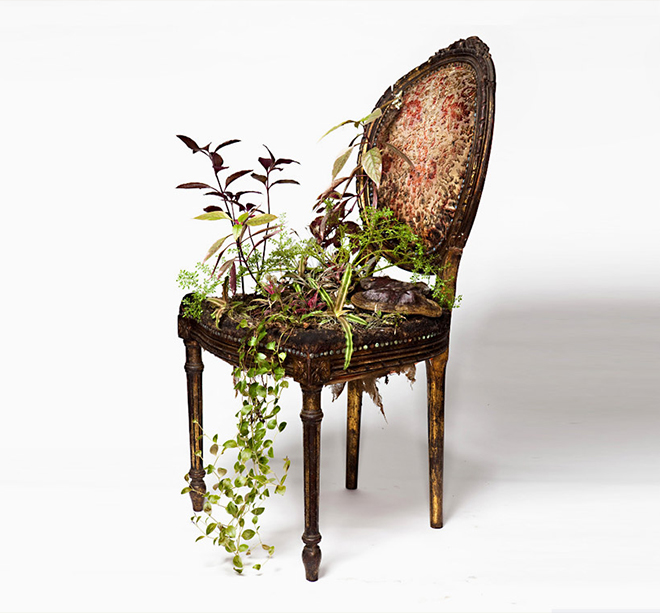 Rodrigo_Bueno_cultivates_botanical_life_within_nature-filled_furniture_2