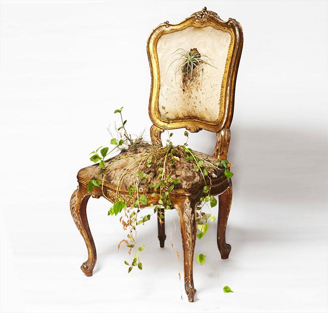 Rodrigo_Bueno_cultivates_botanical_life_within_nature-filled_furniture_4